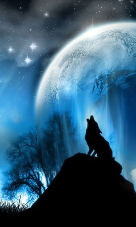 22979 download wallpaper Animals, Landscape, Wolfs, Sky, Planets screensavers and pictures for free
