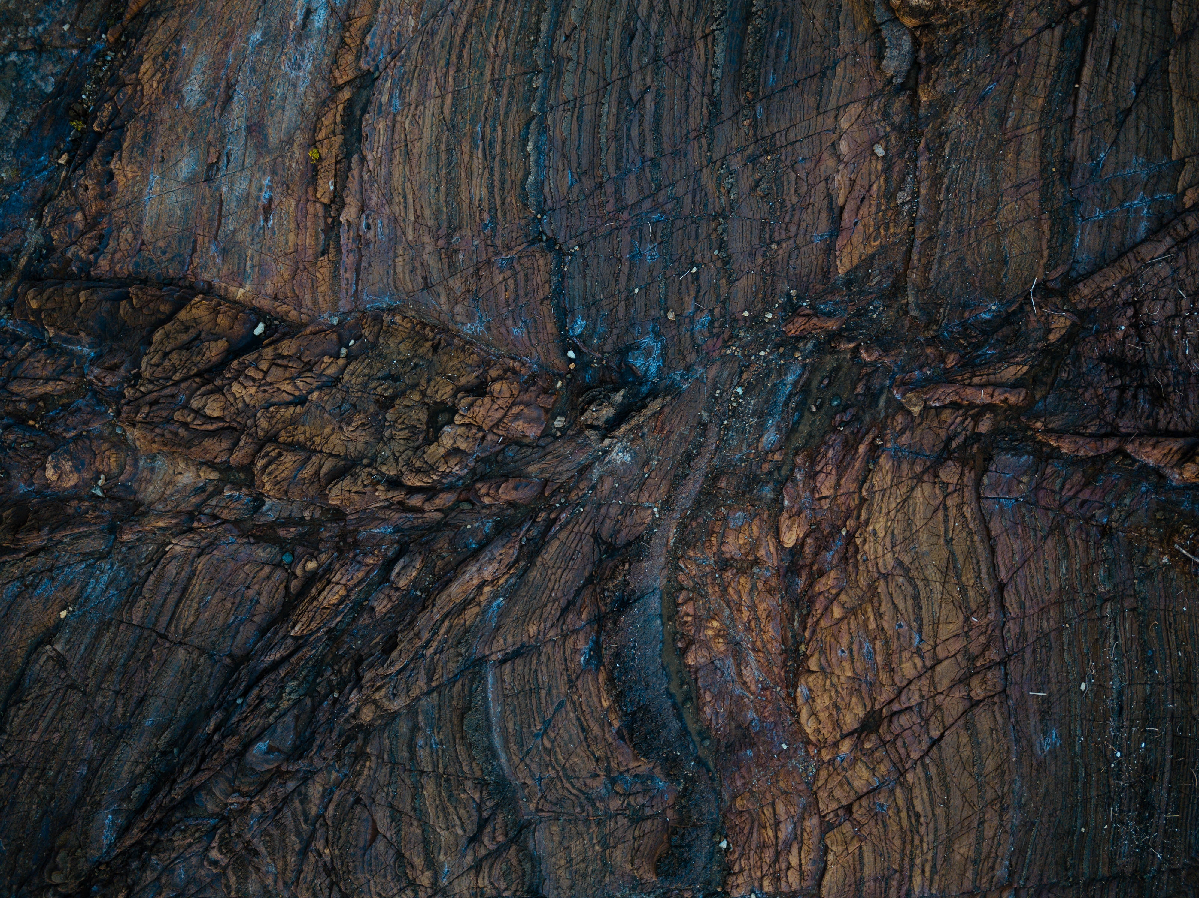 92918 免費下載壁紙 纹理, 木头, 表面, 质地, 湿的, 湿润 屏保和圖片