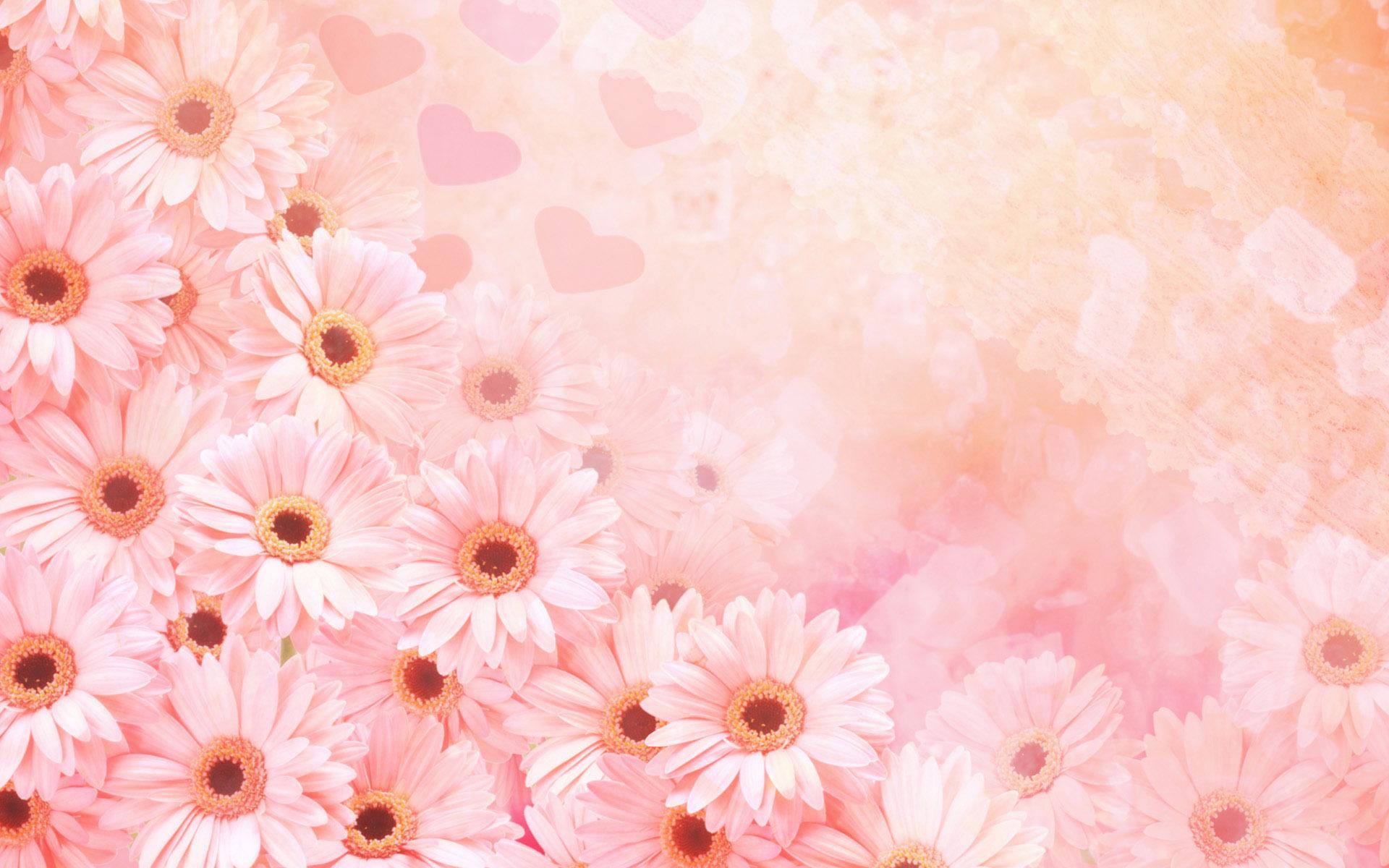12485 скачать обои Растения, Цветы - заставки и картинки бесплатно