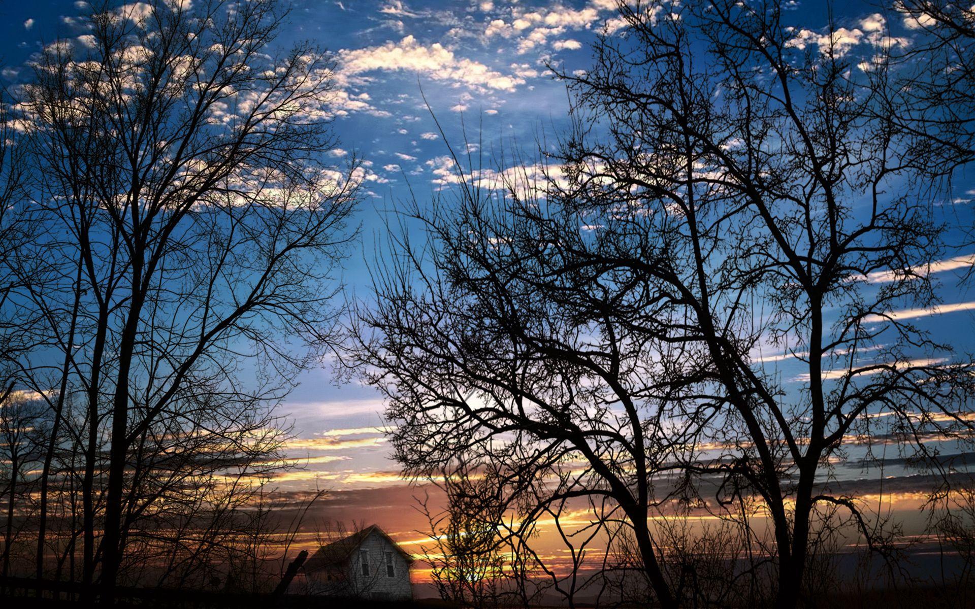 156523 скачать обои Природа, Ветви, Деревья, Закат, Вечер, Сумерки, Небо, Облака, Домик, Наклон - заставки и картинки бесплатно