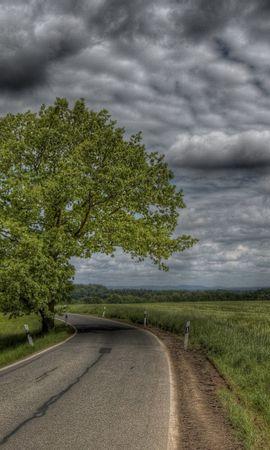 41061 скачать обои Пейзаж, Деревья, Дороги - заставки и картинки бесплатно