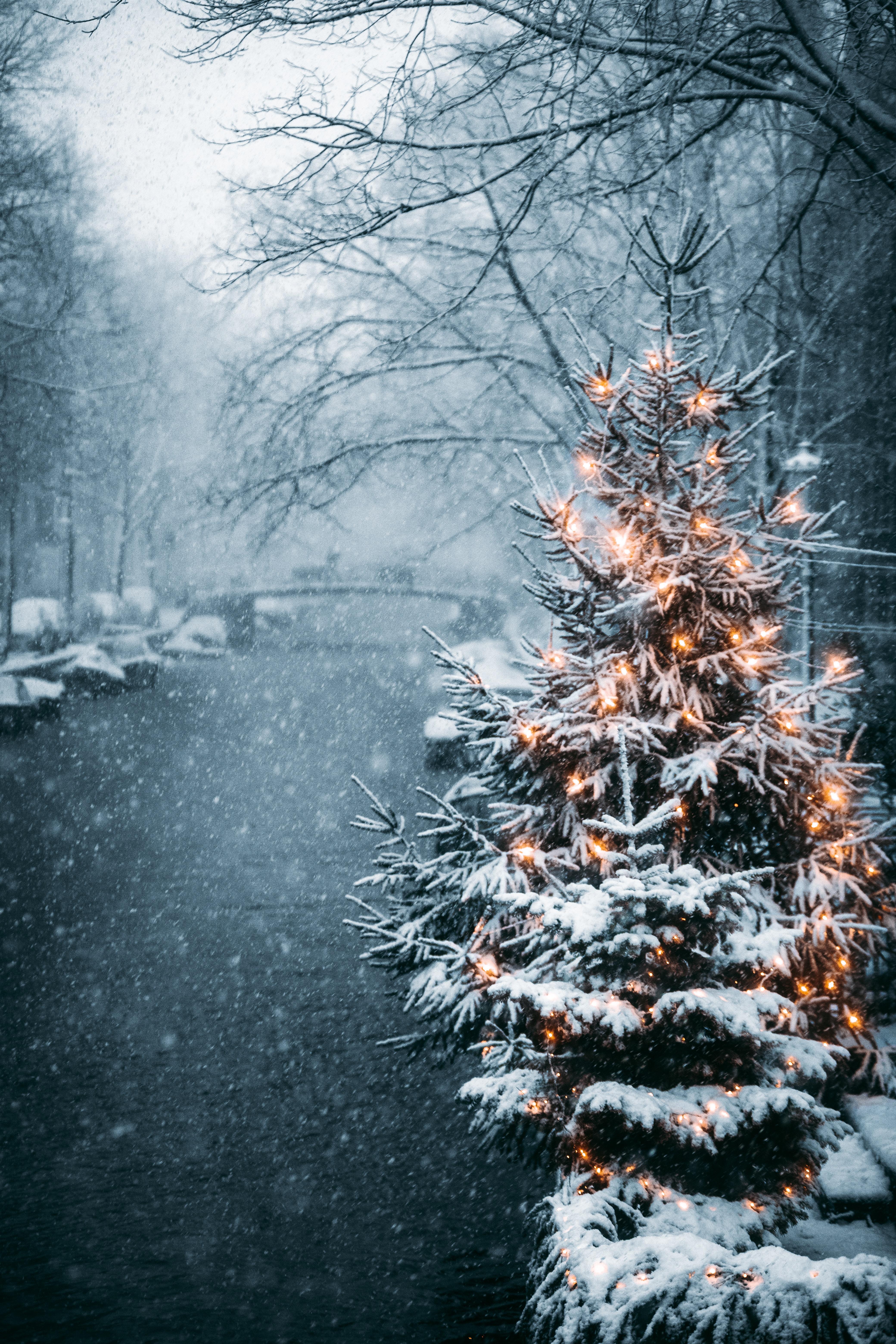 101698 Заставки и Обои Праздники на телефон. Скачать Праздники, Елка, Гирлянды, Снег, Зима, Новый Год картинки бесплатно