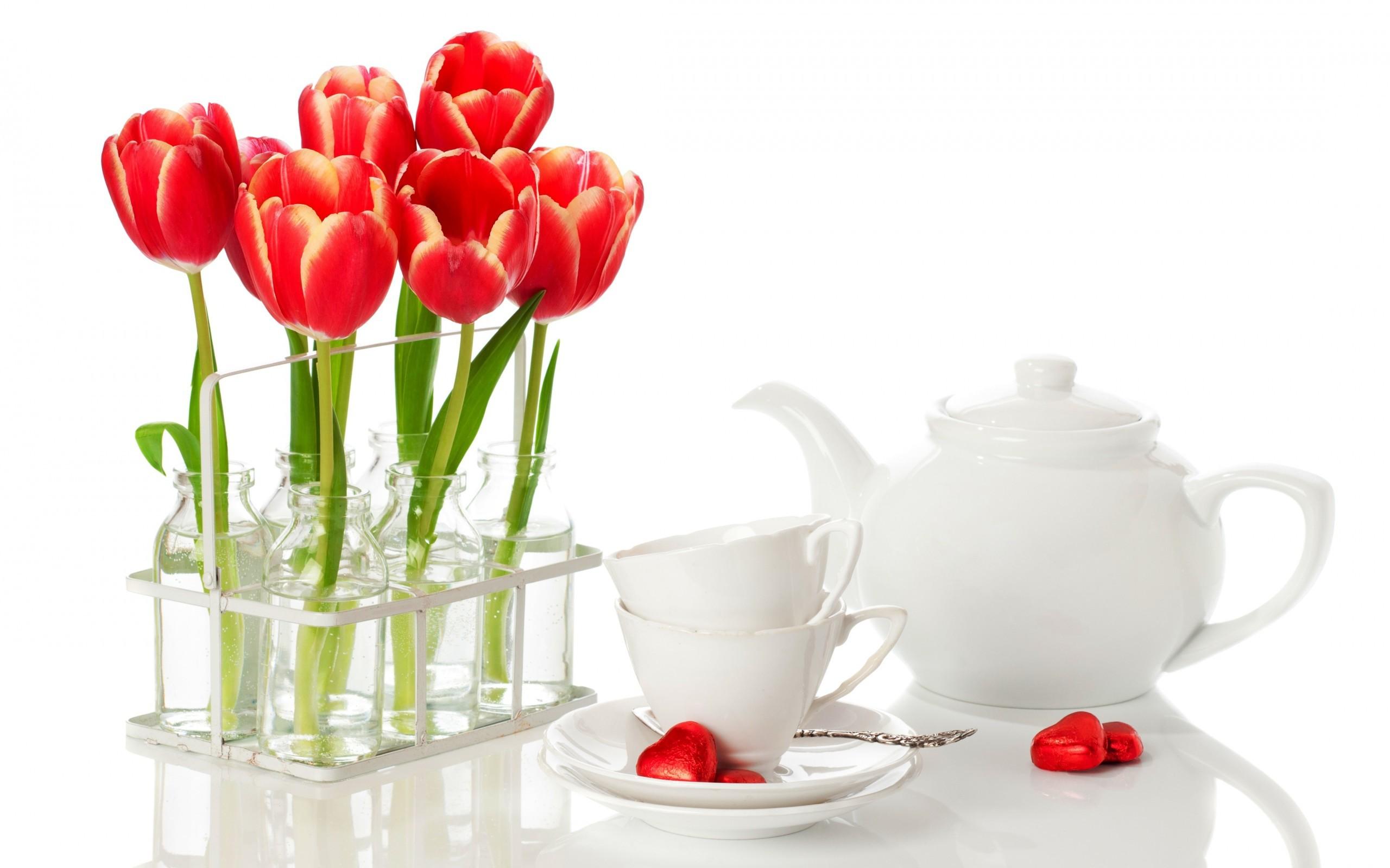 33980 Hintergrundbild herunterladen Hintergrund, Pflanzen, Blumen, Tulpen, Bouquets - Bildschirmschoner und Bilder kostenlos