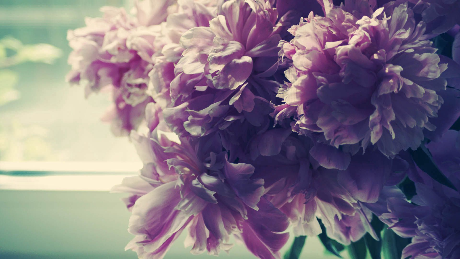 130962 Screensavers and Wallpapers Bouquet for phone. Download Flowers, Peonies, Bouquet pictures for free