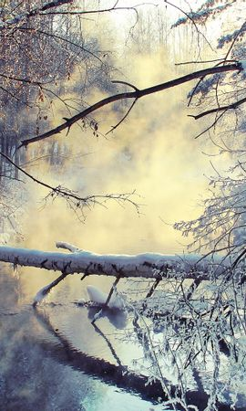 37068 скачать обои Пейзаж, Зима, Река - заставки и картинки бесплатно
