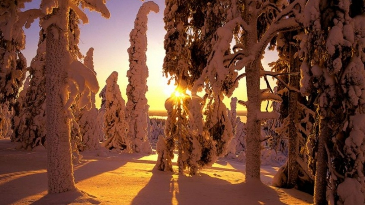 42218 download wallpaper Landscape, Winter screensavers and pictures for free