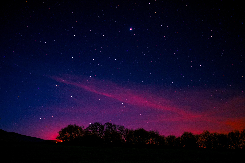 65024 Заставки и Обои Облака на телефон. Скачать Звездное Небо, Ночь, Деревья, Облака, Космос картинки бесплатно