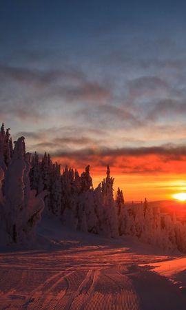 153202 скачать обои Природа, Лес, Закат, Зима, Склон, Заснеженный, Пейзаж - заставки и картинки бесплатно