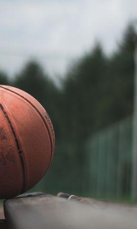 122345 descargar fondo de pantalla Bola, Pelota, Baloncesto, Mesa De Trabajo, Banco, Deportes, El Juego, Juego: protectores de pantalla e imágenes gratis
