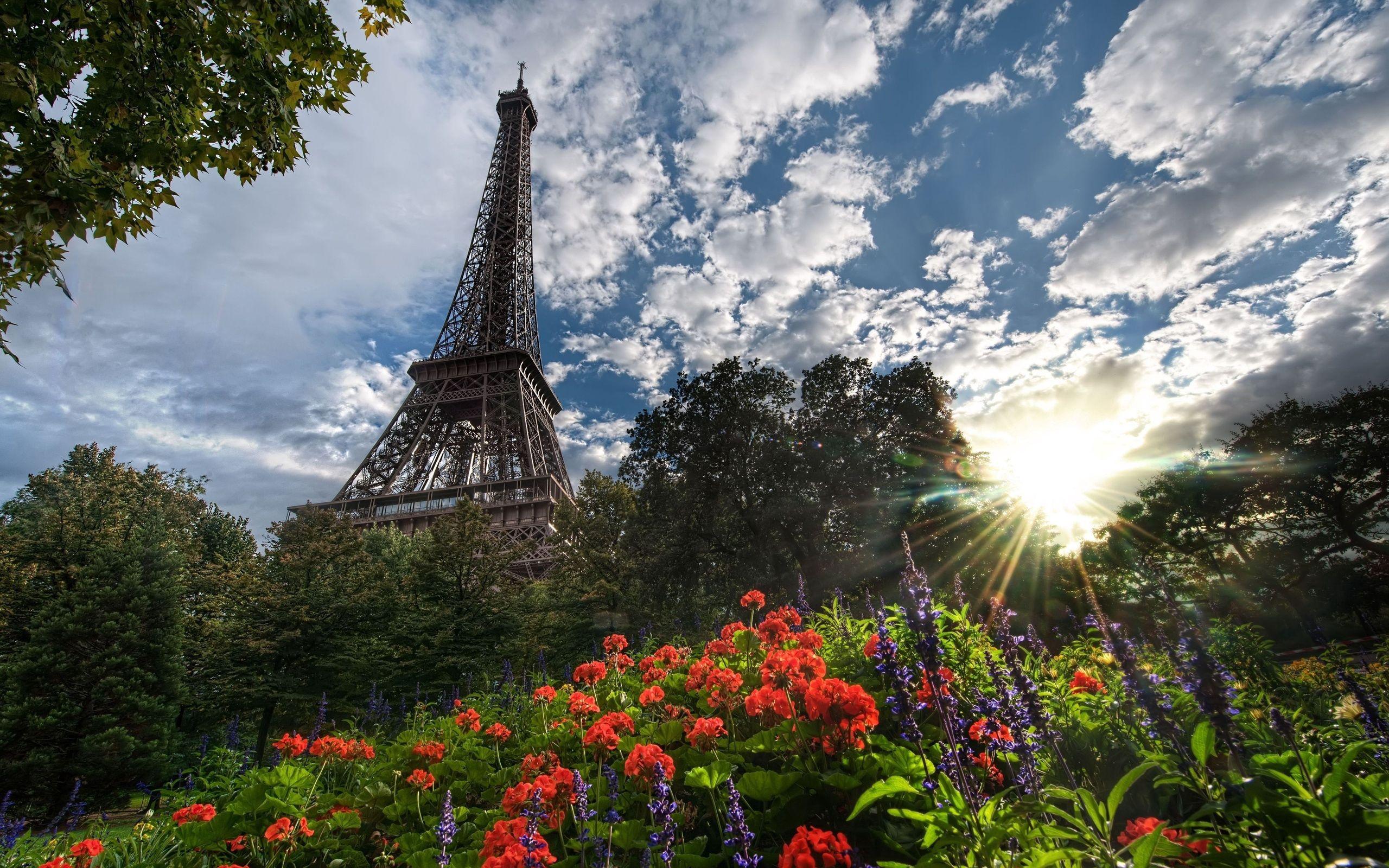 133933 télécharger le fond d'écran Arbres, Paris, Villes, Tour Eiffel, Sun, Fleurs - économiseurs d'écran et images gratuitement
