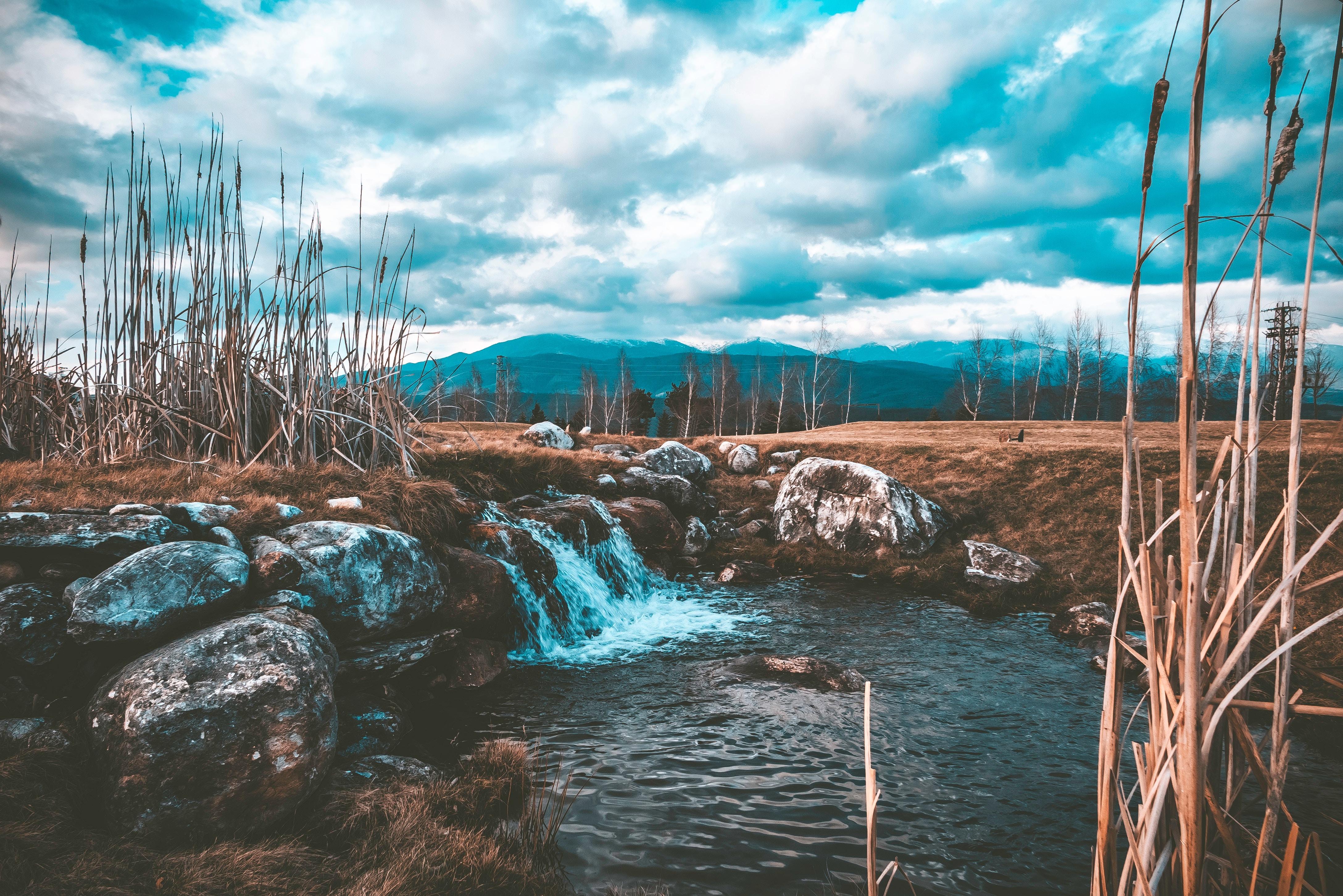 109168 завантажити шпалери Вода, Природа, Трава, Камені, Потік, Струмок, Брук - заставки і картинки безкоштовно