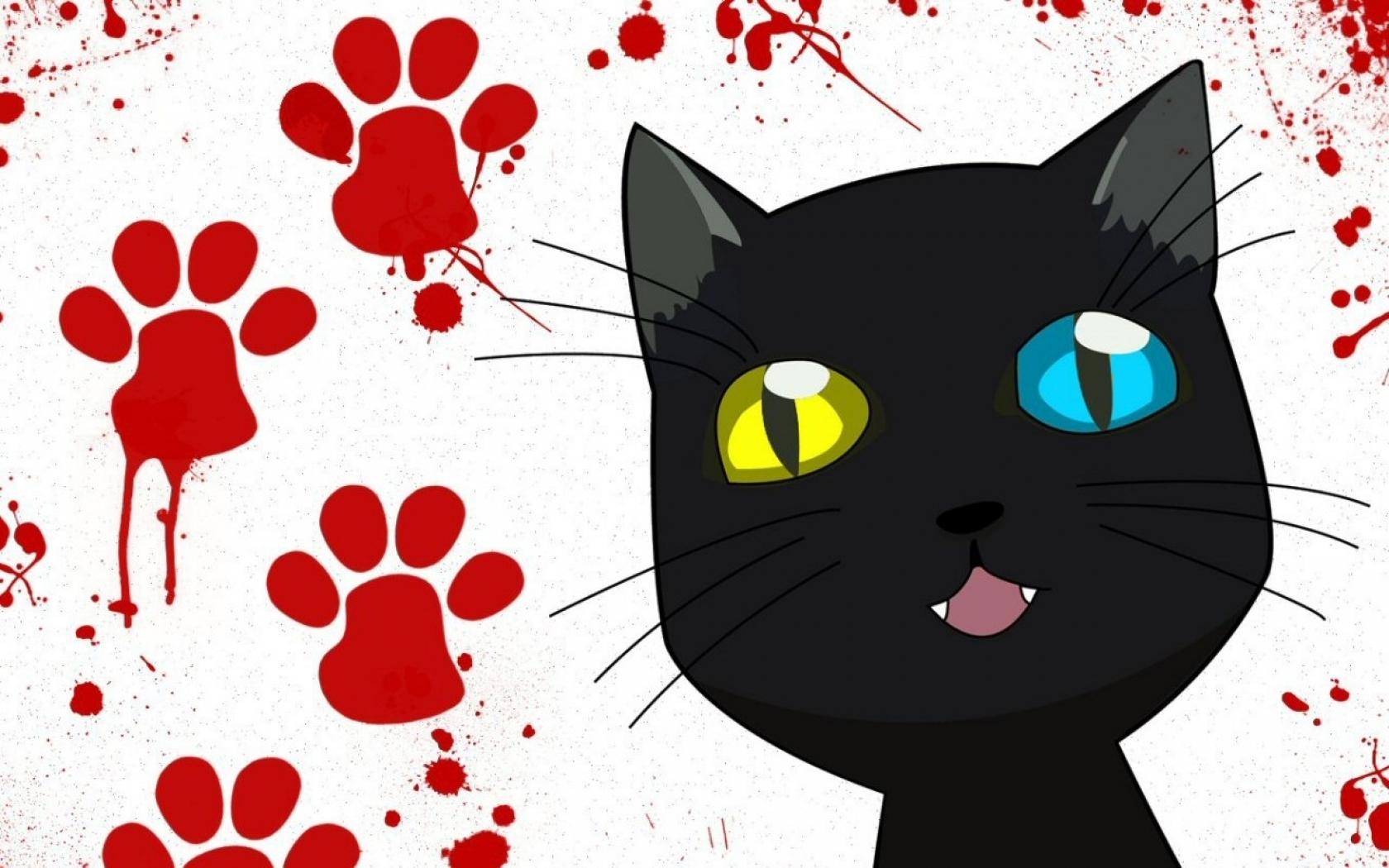 23124 скачать обои Животные, Кошки (Коты, Котики) - заставки и картинки бесплатно