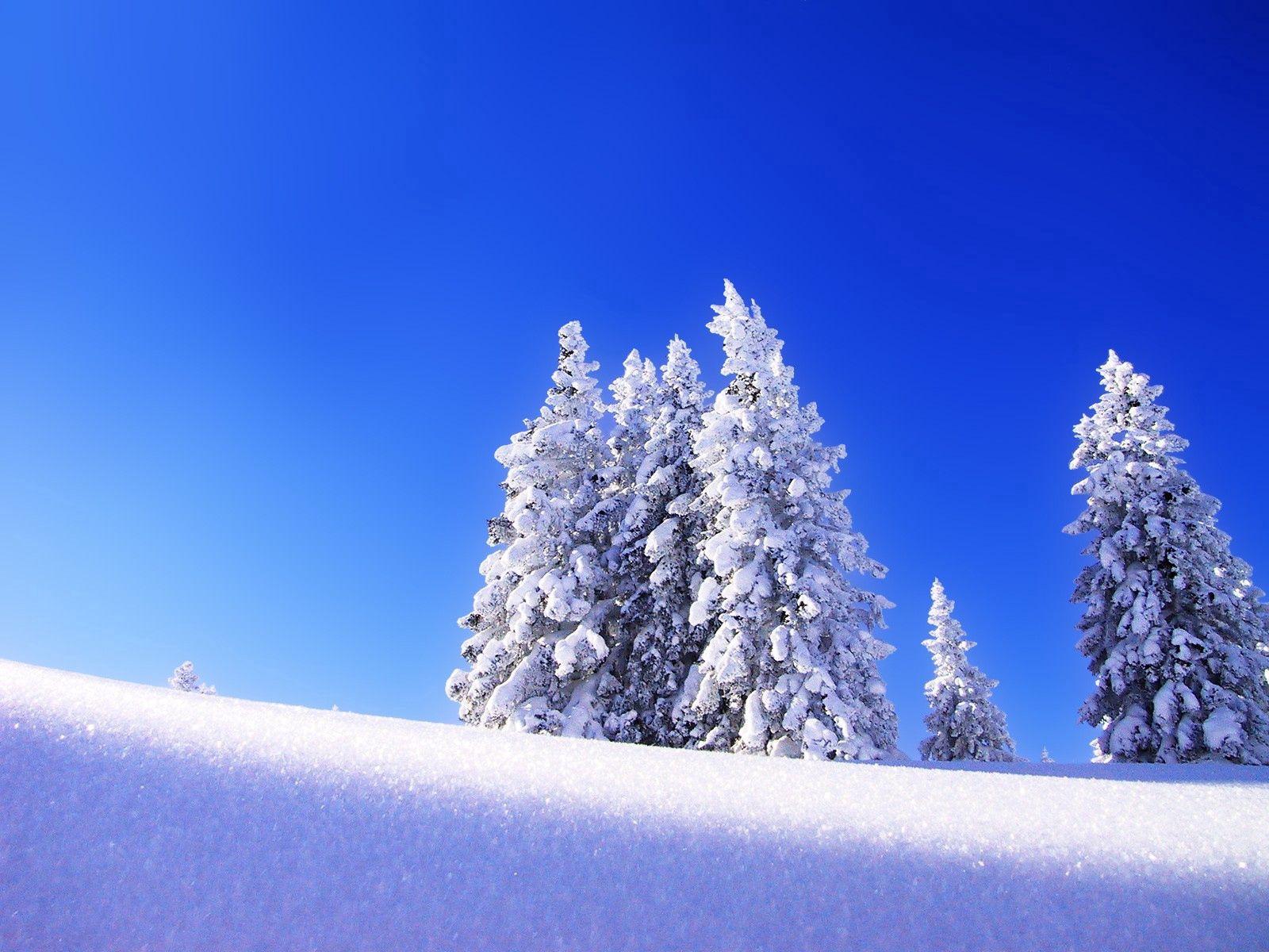 133135 descargar fondo de pantalla Naturaleza, Comió, Ato, Nieve, Invierno, Montaña, Elevación, Subir: protectores de pantalla e imágenes gratis