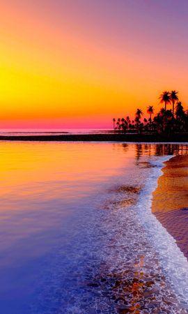 63570壁紙のダウンロード自然, ビーチ, 熱帯, 海, サンド, 日没, パームス-スクリーンセーバーと写真を無料で