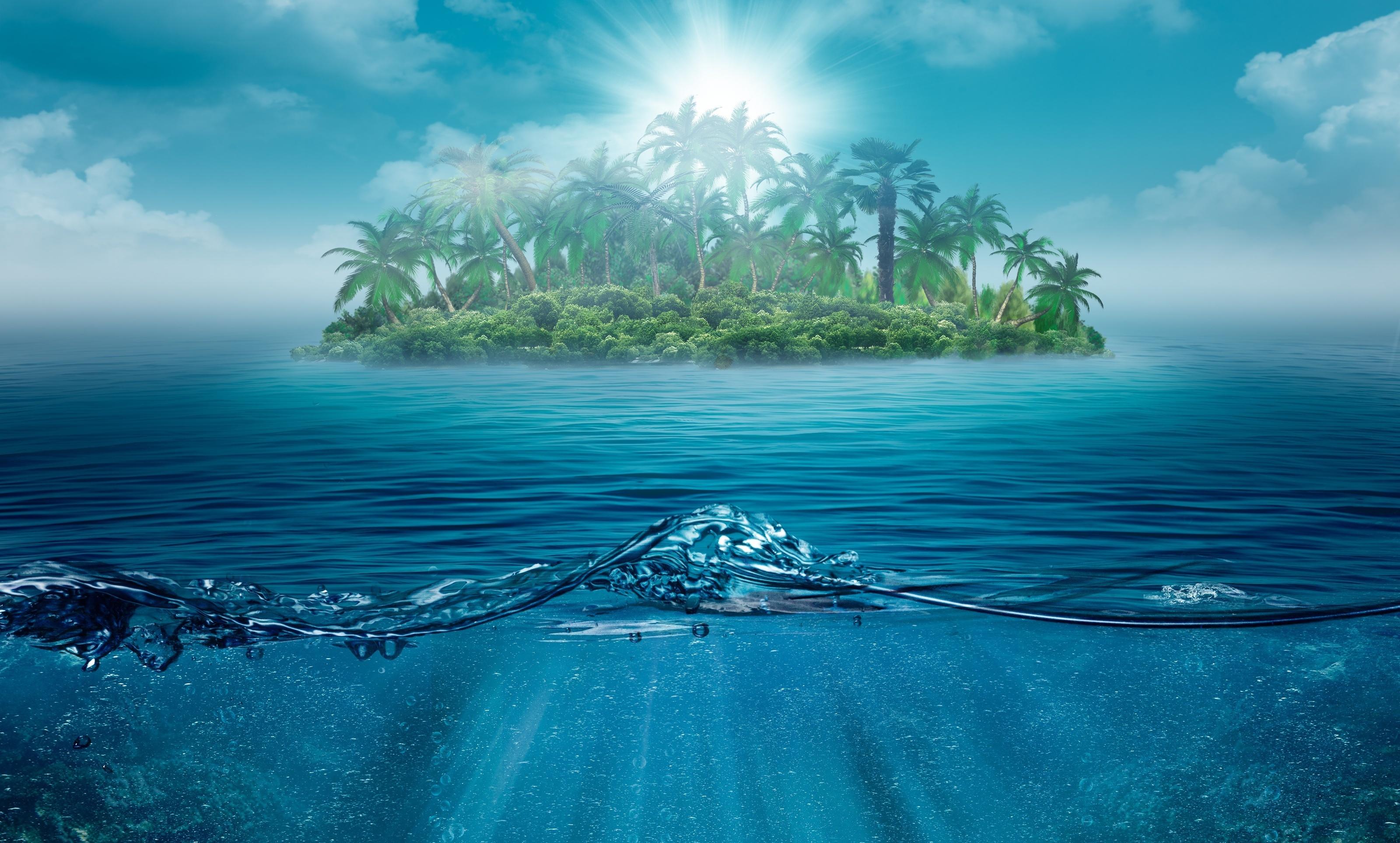 23047 скачать обои Пейзаж, Море, Волны, Пальмы - заставки и картинки бесплатно
