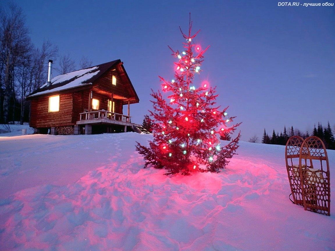 Скачать картинку Новый Год (New Year), Рождество (Christmas, Xmas), Елки, Зима, Праздники, Пейзаж в телефон бесплатно.