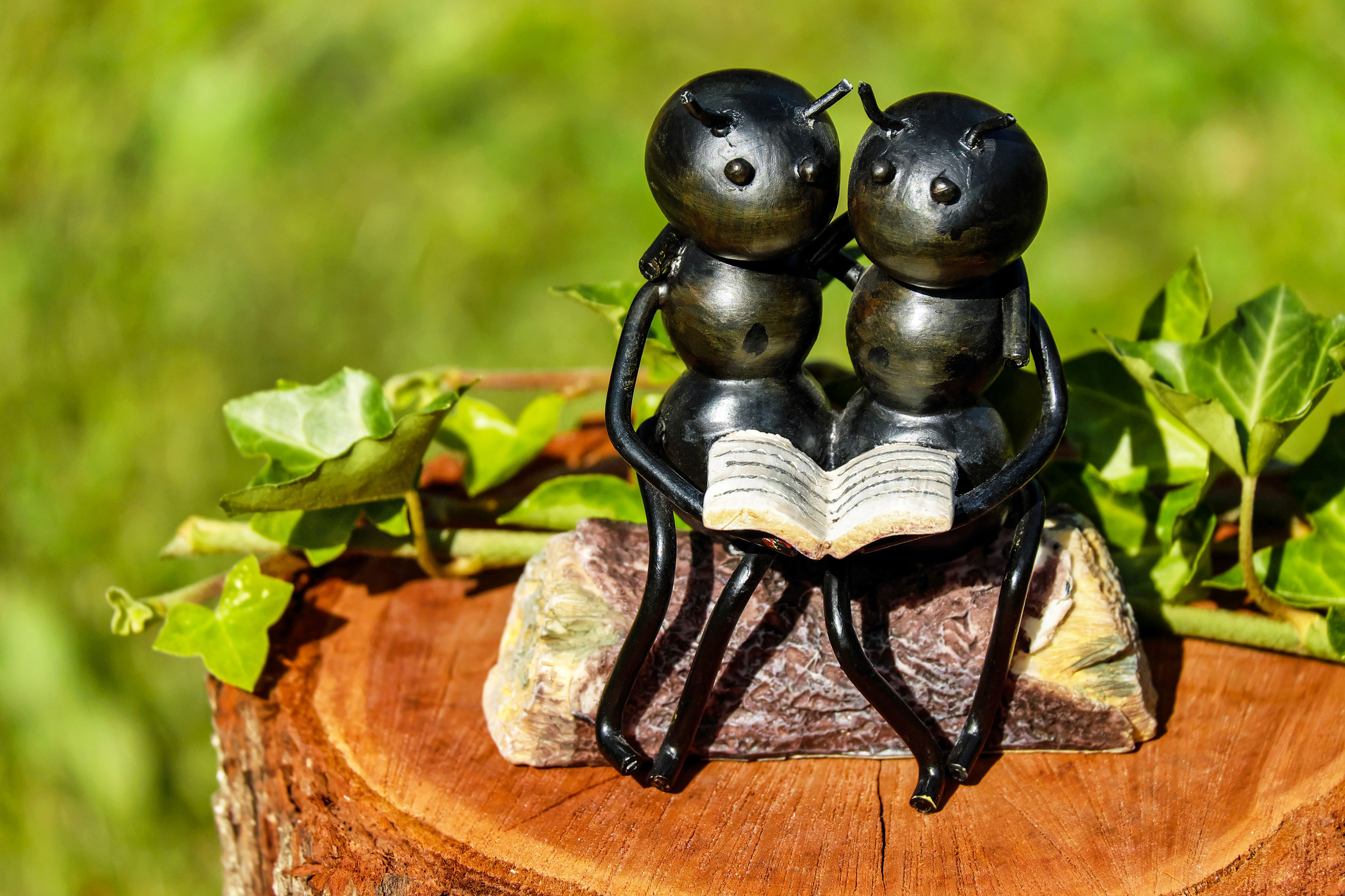135400 download wallpaper Miscellanea, Miscellaneous, Ants, Sculpture, Bench, Couple, Pair, Book, Insects screensavers and pictures for free