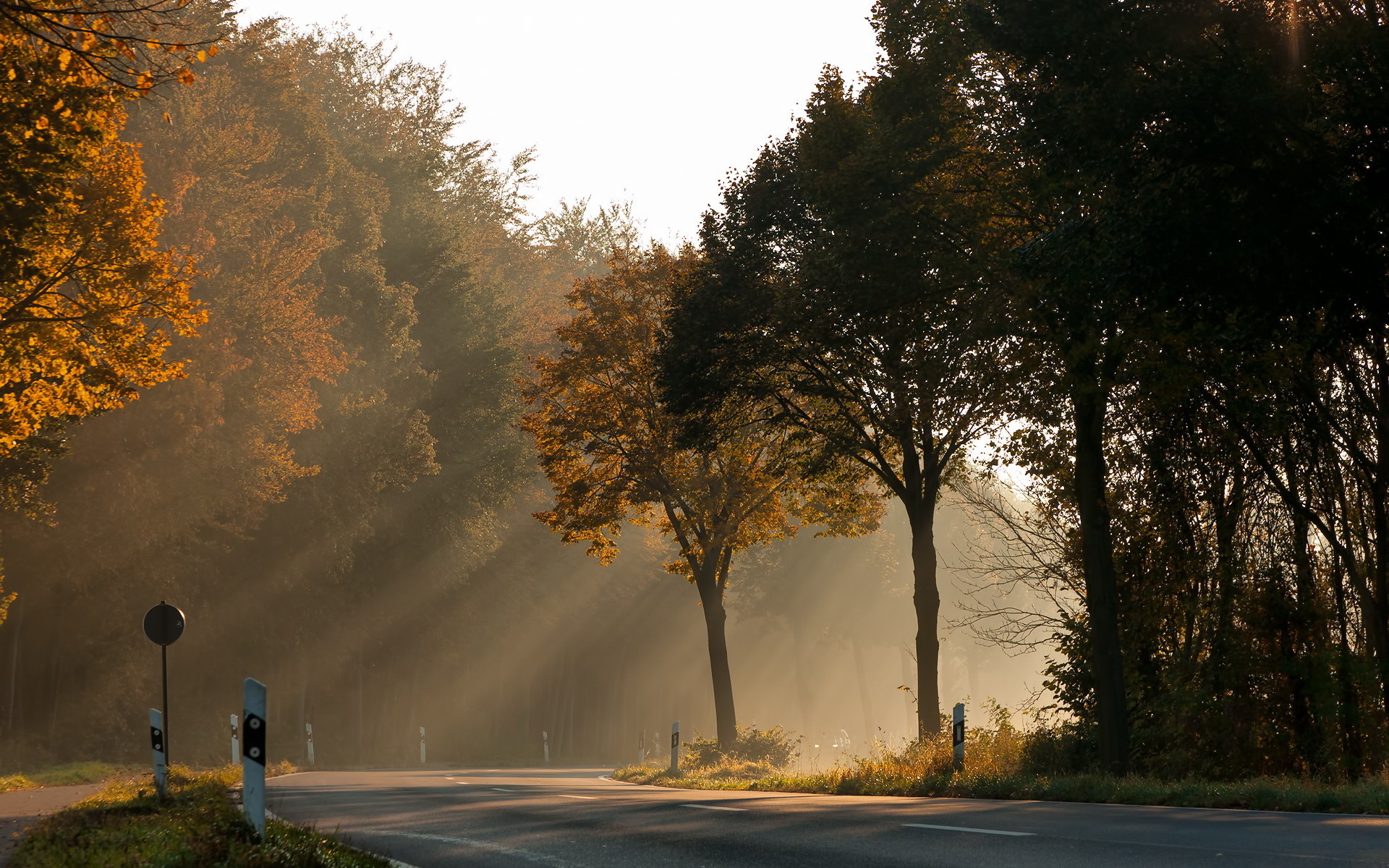 36597 скачать обои Пейзаж, Дороги, Осень - заставки и картинки бесплатно