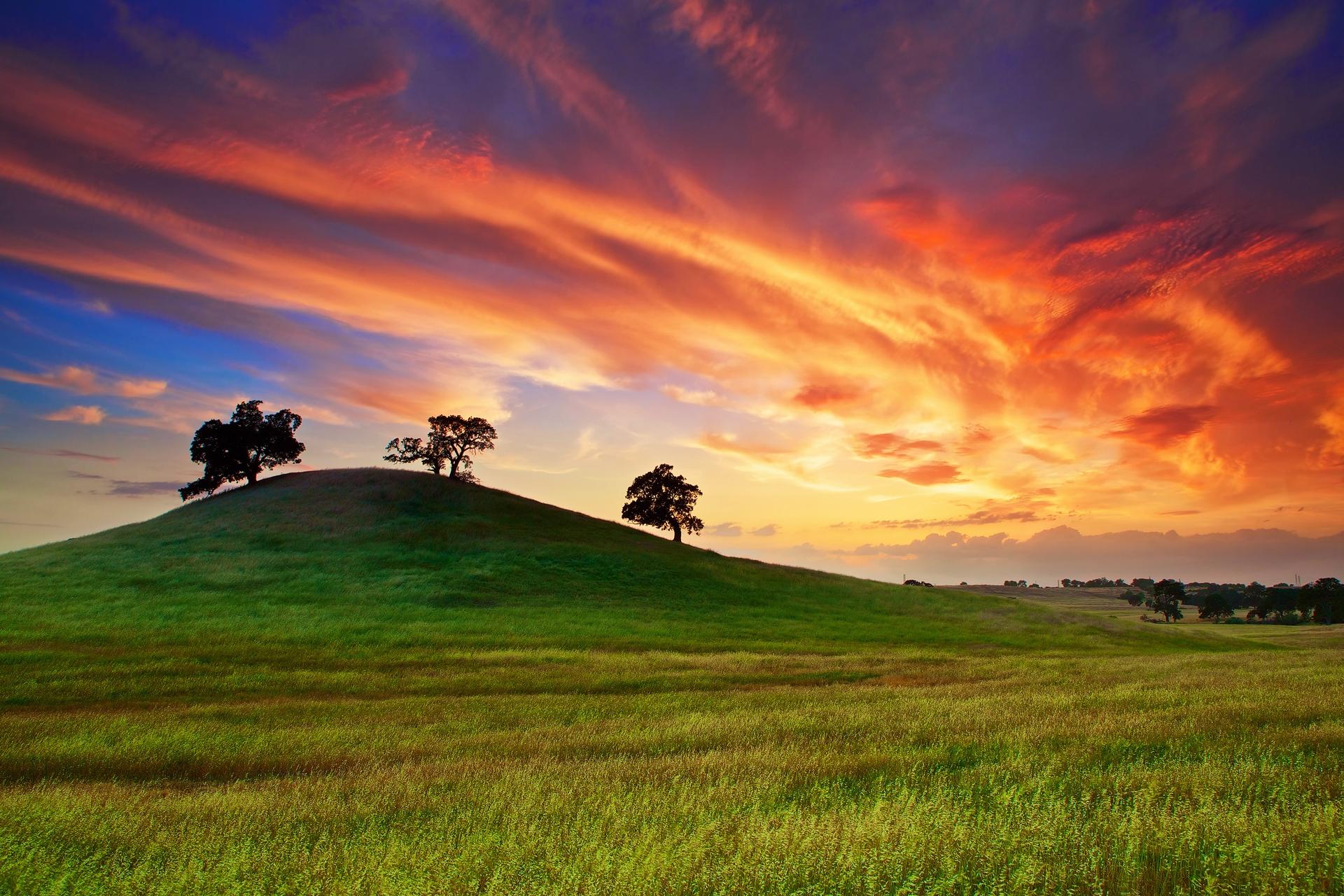 139078 télécharger le fond d'écran Nature, Arbres, Coucher De Soleil, Herbe, Sky, Nuages, Domaine, Champ, Etats-Unis, États-Unis, Printemps, Source, Californie, Mai - économiseurs d'écran et images gratuitement