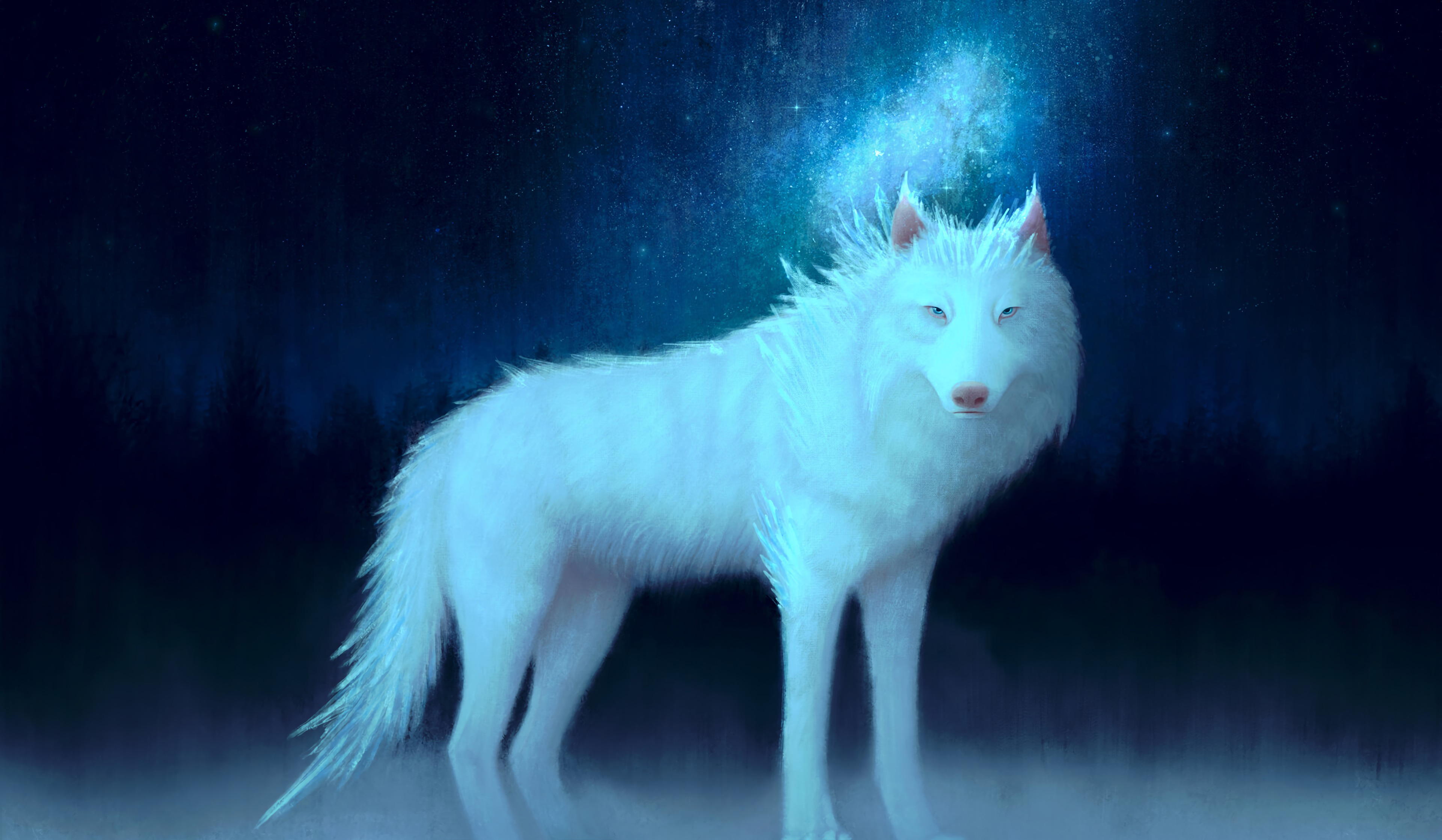 93227 Hintergrundbild herunterladen Kunst, Wolf, Tier - Bildschirmschoner und Bilder kostenlos