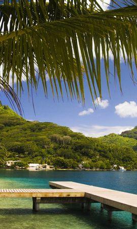 18636 скачать обои Пейзаж, Горы, Море, Пляж, Пальмы - заставки и картинки бесплатно