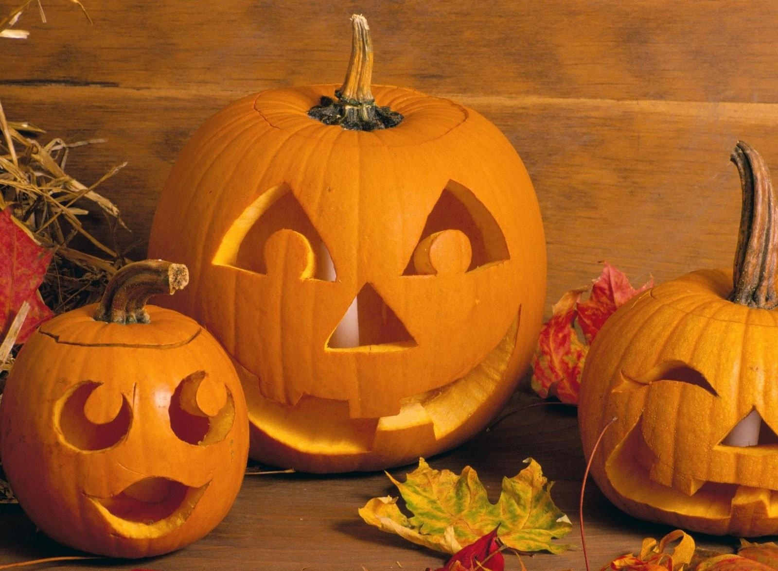 155607 download wallpaper Holiday, Holidays, Halloween, Leaves, Candles, Pumpkin screensavers and pictures for free