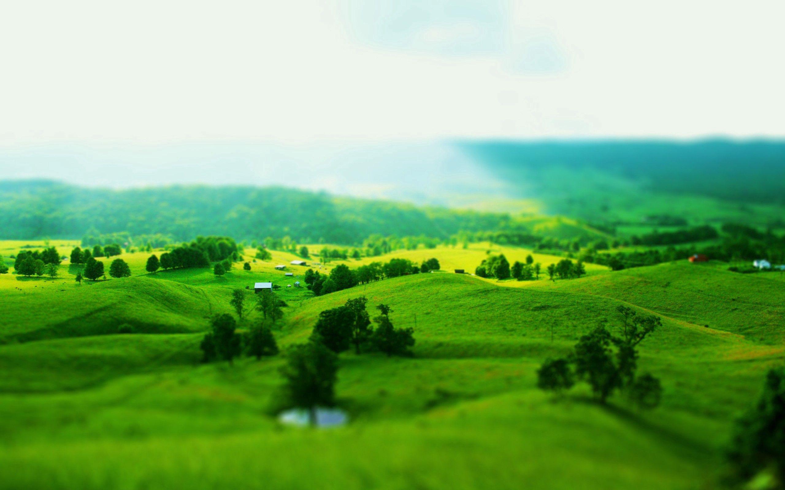 93950 скачать обои Природа, Холмы, Поля, Склоны, Деревья, Зелень, Обман Зрения, Пейзаж - заставки и картинки бесплатно