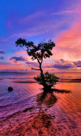 36625 скачать обои Пейзаж, Река, Деревья, Закат - заставки и картинки бесплатно