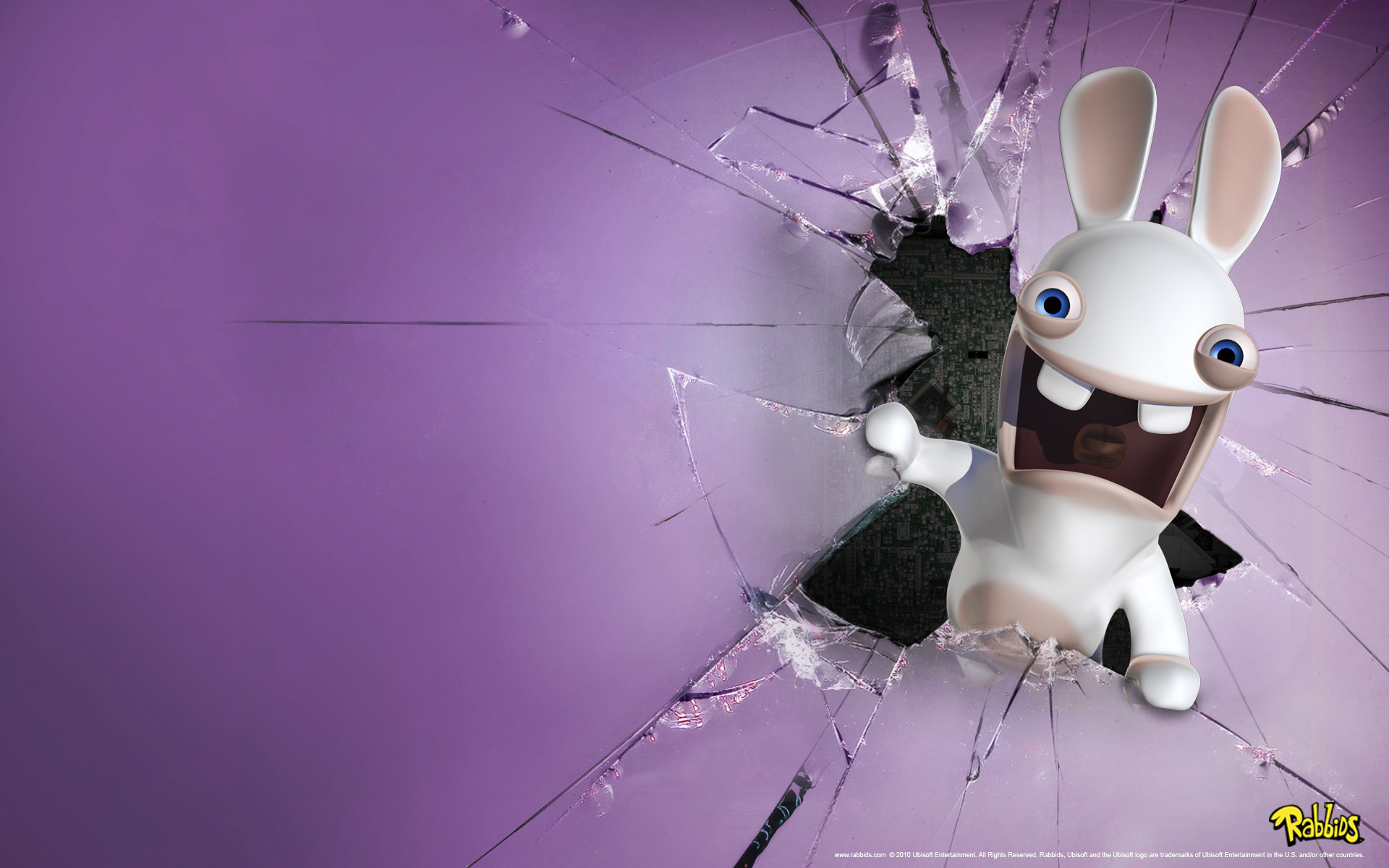 23057 download wallpaper Funny, Animals, Background, Rabbits, Violet screensavers and pictures for free