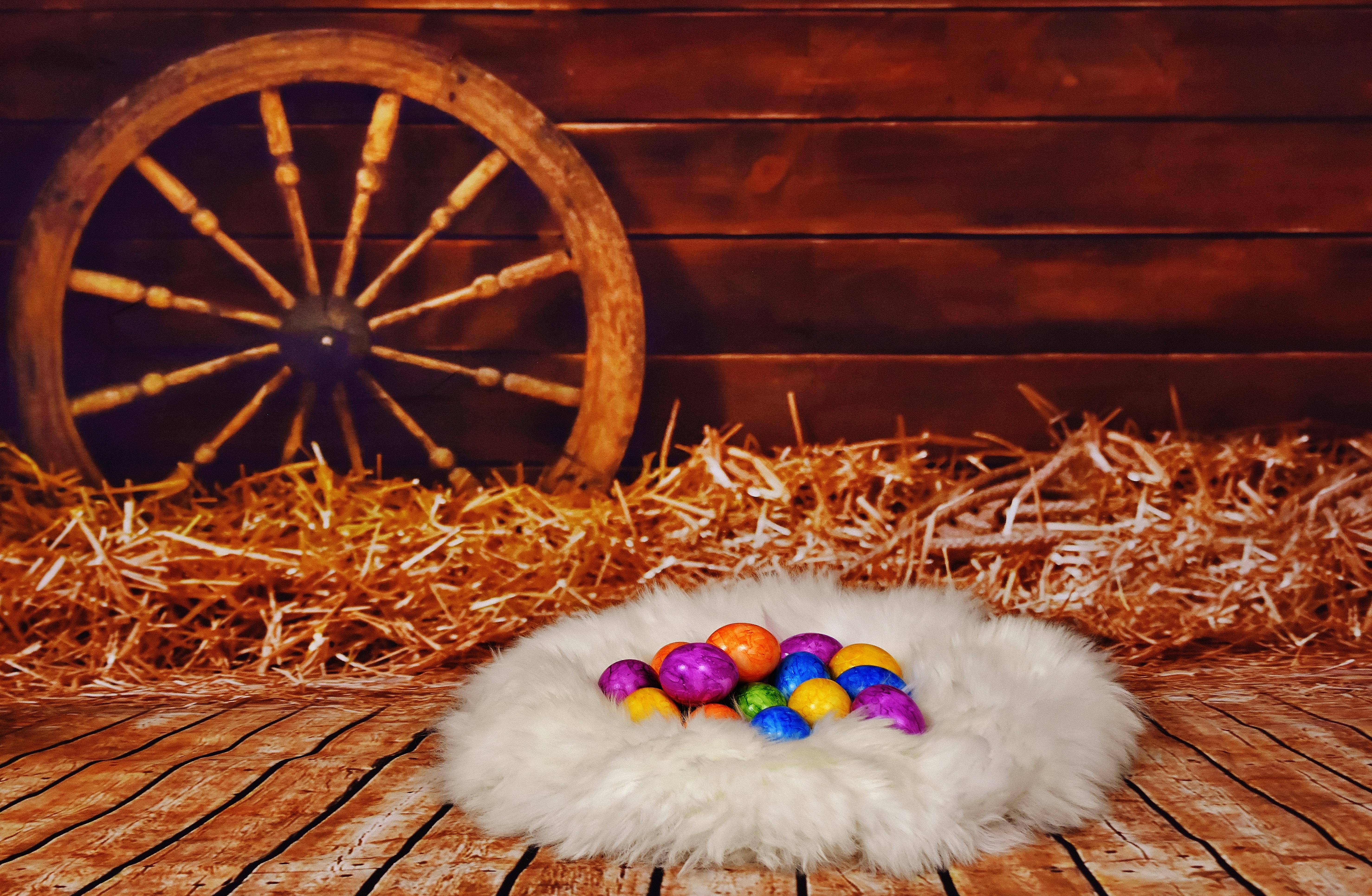 94912 descargar fondo de pantalla Vacaciones, Nido, Heno, Pascua, Huevos: protectores de pantalla e imágenes gratis
