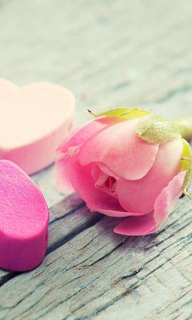 145484 скачать обои Любовь, Сердце, Цветок, Нежность, Розовый - заставки и картинки бесплатно