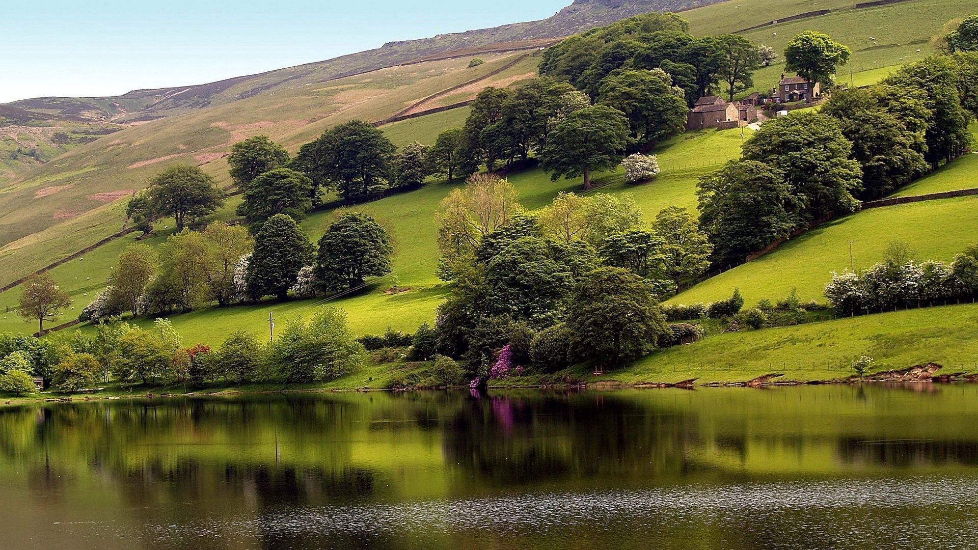 88075 скачать обои Природа, Дома, Деревья, Трава, Озеро, Зелень, Склон - заставки и картинки бесплатно