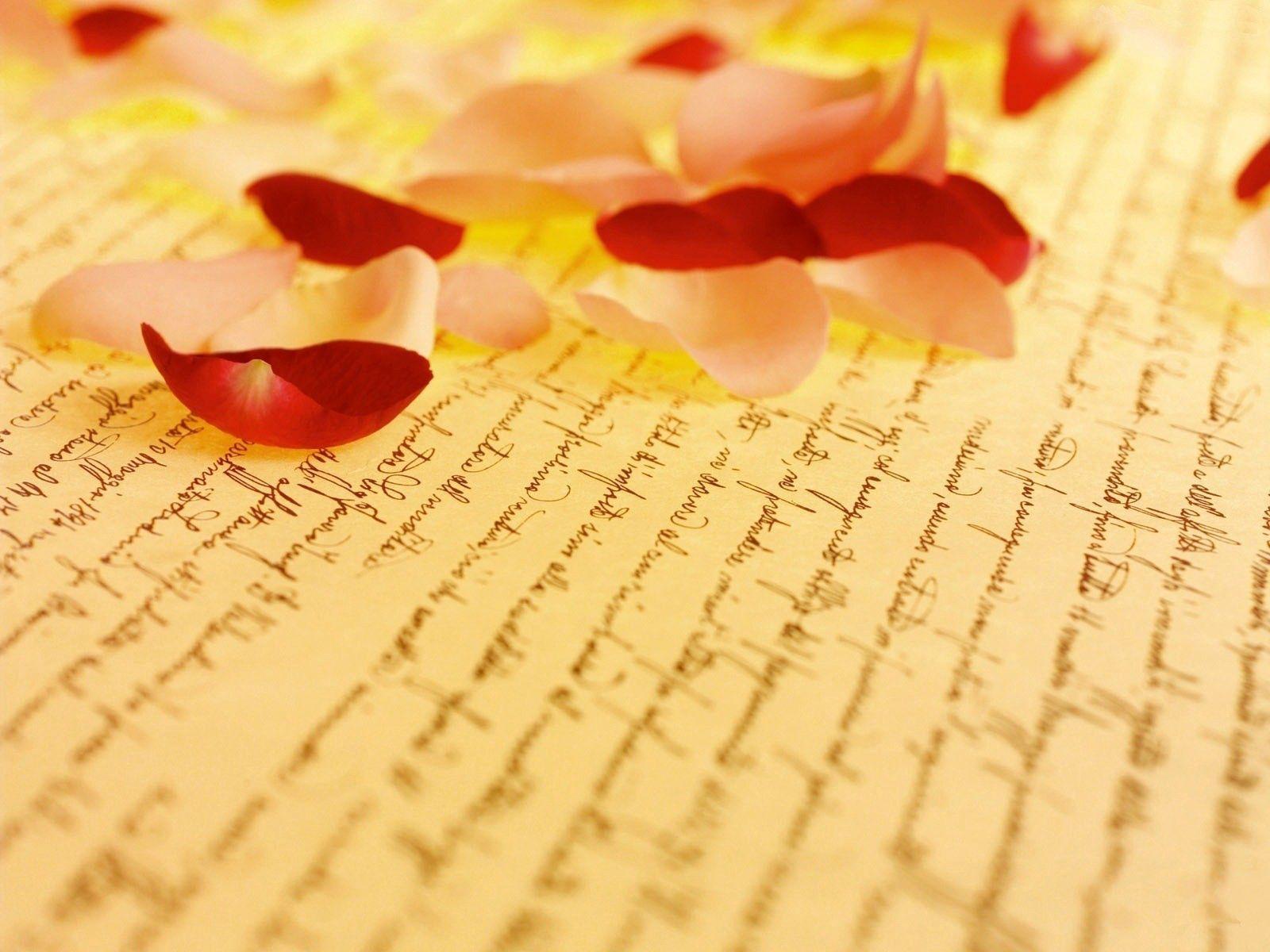 138778 Hintergrundbild herunterladen Papier, Makro, Rose, Blütenblätter, Inschrift - Bildschirmschoner und Bilder kostenlos