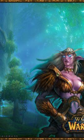 28520 télécharger le fond d'écran Jeux, World Of Warcraft, Wow - économiseurs d'écran et images gratuitement