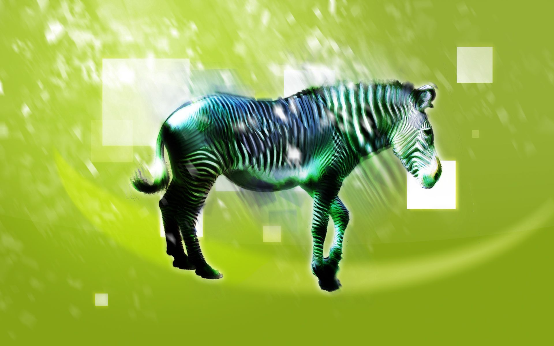 146330 download wallpaper Abstract, Zebra, Animal, Shine, Light, Picture, Drawing, Light Coloured screensavers and pictures for free