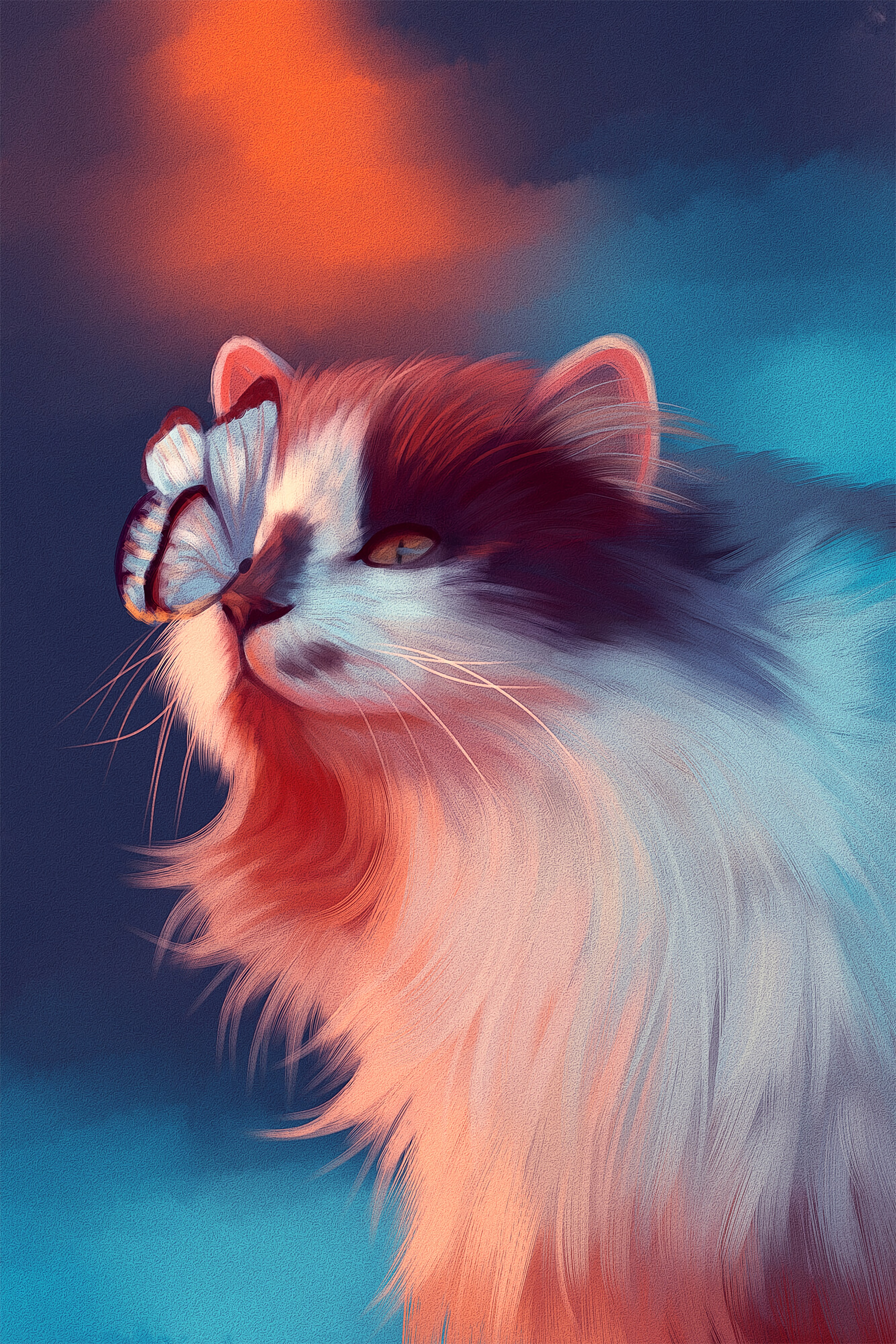 76572 Screensavers and Wallpapers Nice for phone. Download Art, Cat, Fluffy, Butterfly, Nice, Sweetheart pictures for free