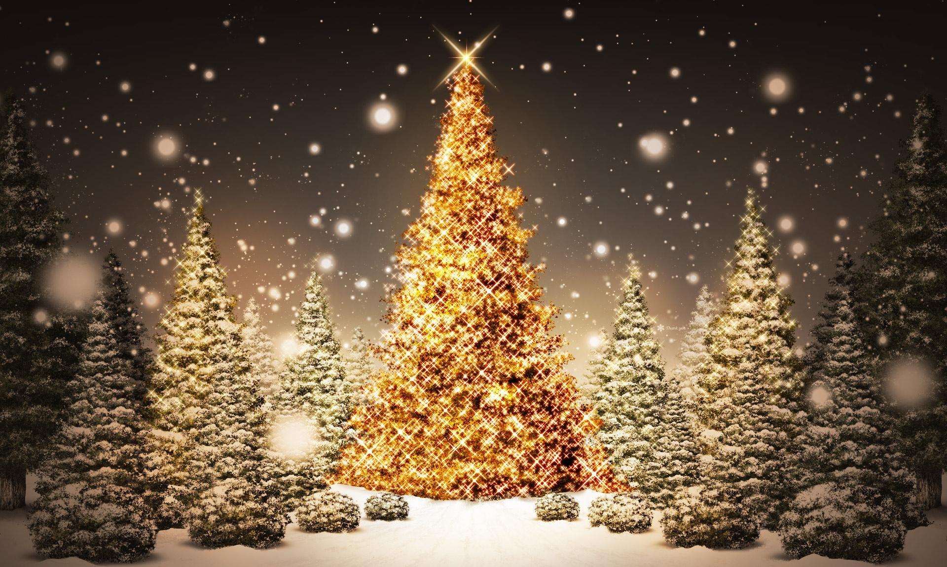 136016 скачать обои Праздники, Новый Год, Рождество, Лес, Открытка, Снег, Ночь, Праздник, Елки - заставки и картинки бесплатно