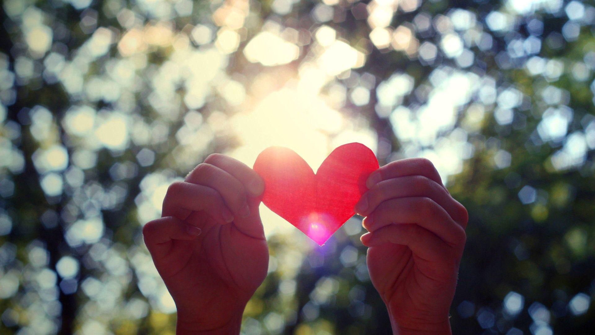 65145 скачать обои Любовь, Руки, Сердце, Свет, Деревья, Листья - заставки и картинки бесплатно