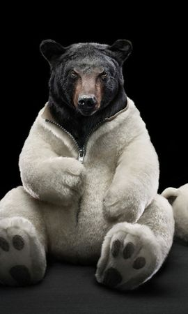 35666 download wallpaper Funny, Animals, Bears screensavers and pictures for free