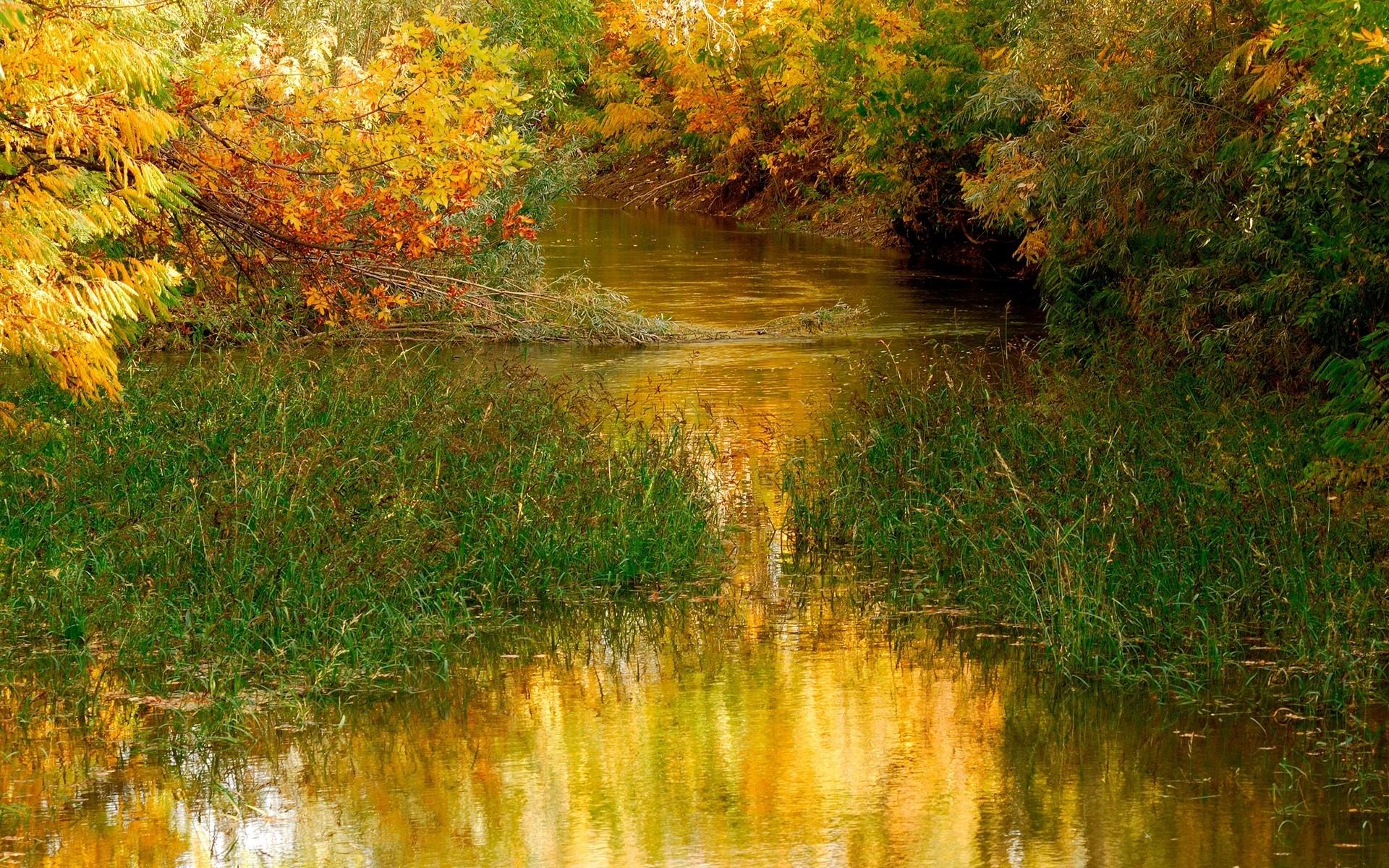 7542 скачать обои Пейзаж, Река, Трава, Осень - заставки и картинки бесплатно