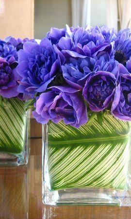 143841 скачать обои Цветы, Зелень, Оформление, Букеты - заставки и картинки бесплатно