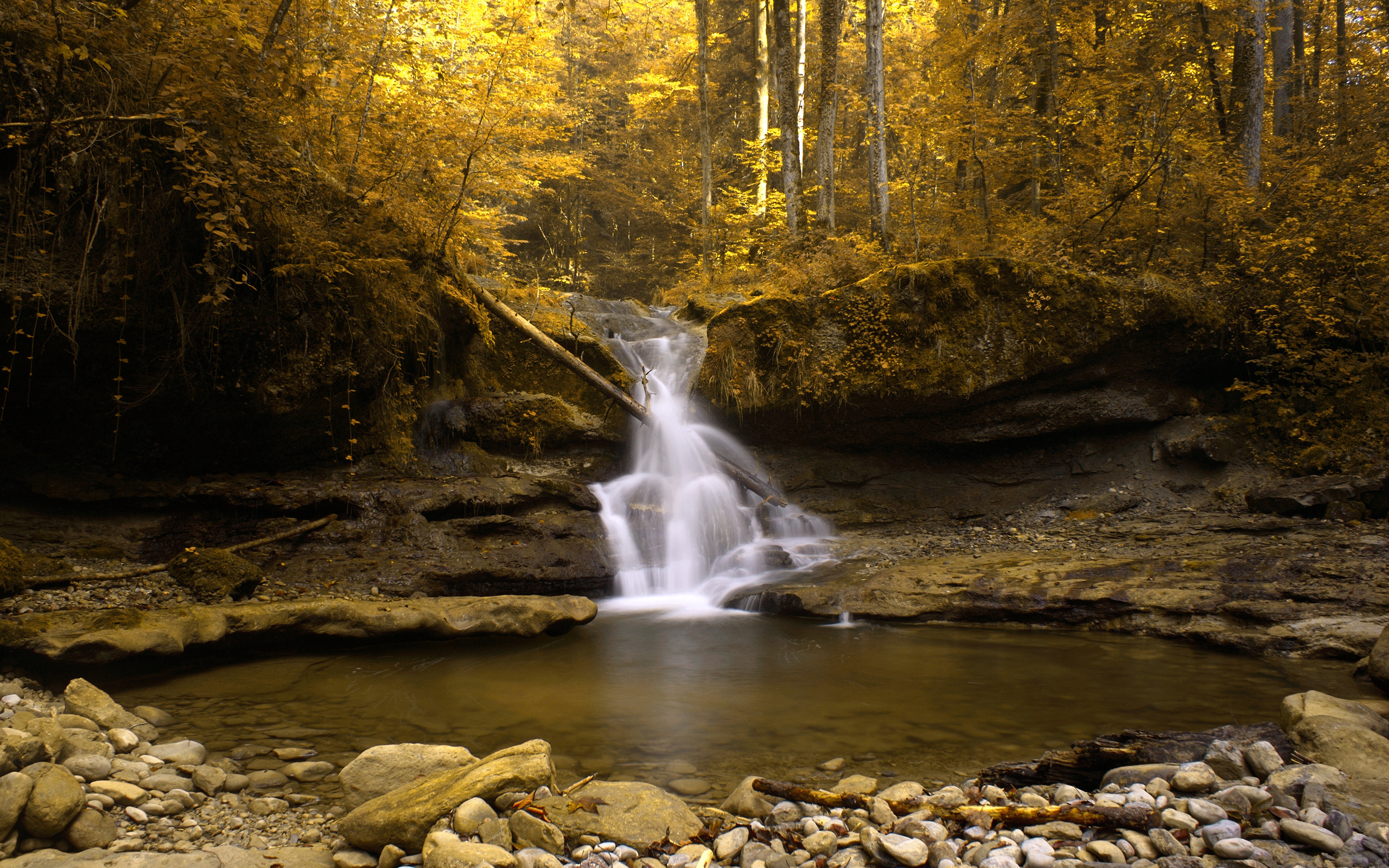 24445 download wallpaper Landscape, Rivers, Trees, Autumn, Waterfalls screensavers and pictures for free