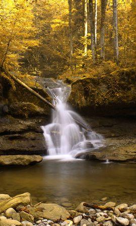 24445 скачать обои Пейзаж, Река, Деревья, Осень, Водопады - заставки и картинки бесплатно