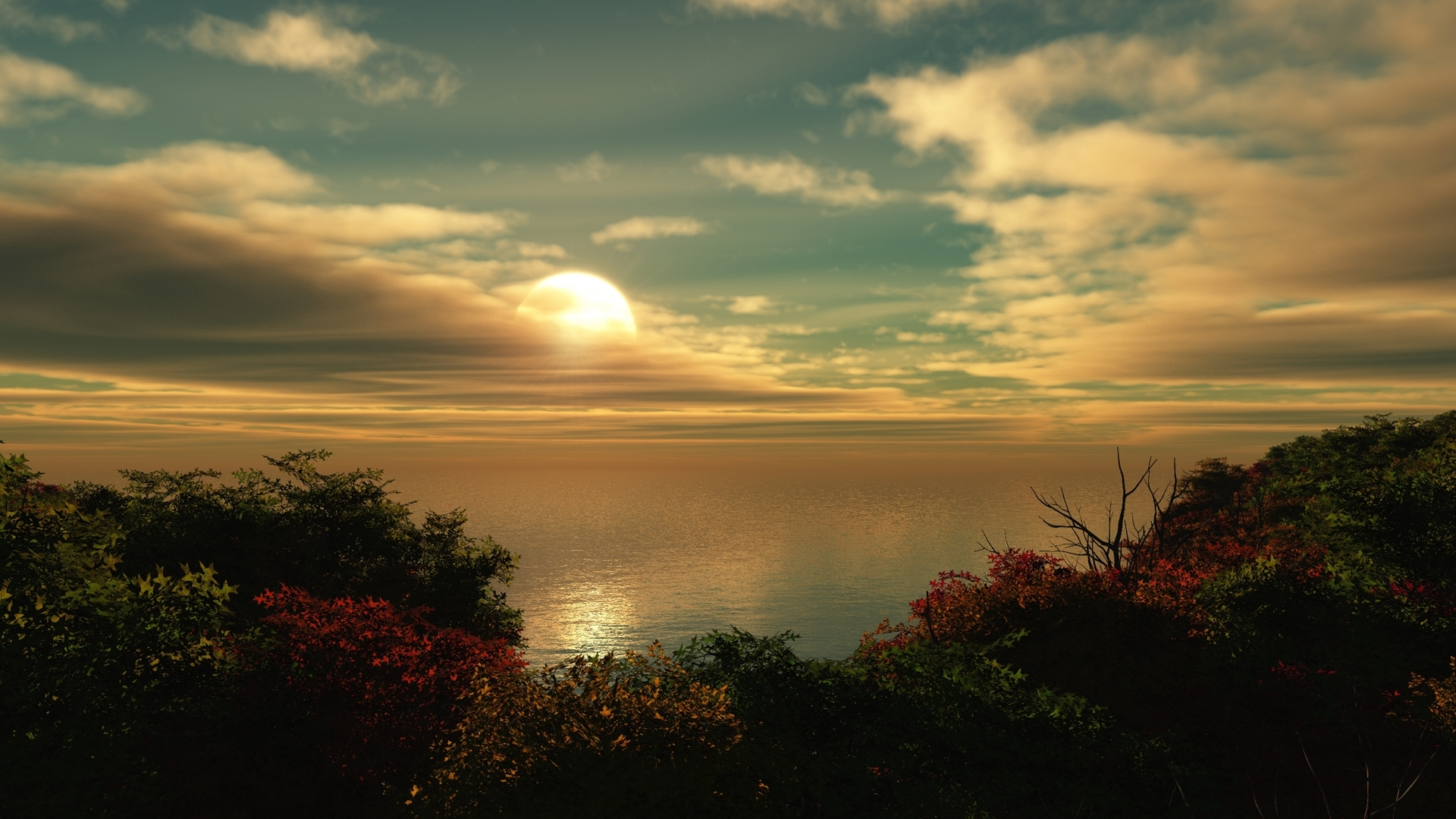 24491 скачать обои Пейзаж, Деревья, Море, Солнце, Облака - заставки и картинки бесплатно