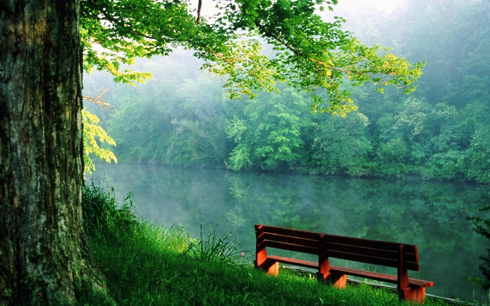 3053 скачать обои Пейзаж, Река, Деревья - заставки и картинки бесплатно