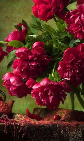 17904 скачать обои Растения, Цветы, Пионы, Натюрморт - заставки и картинки бесплатно