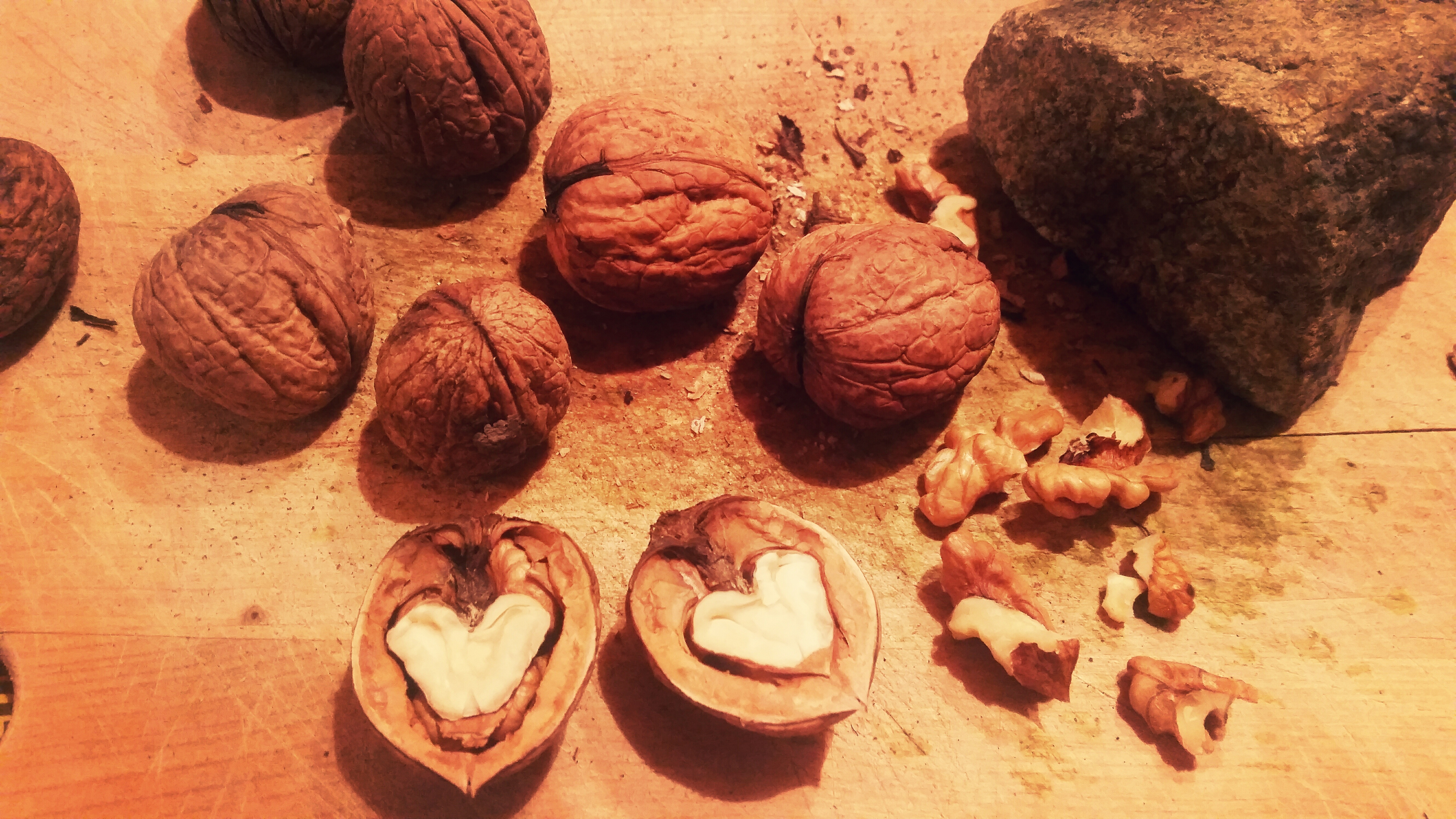 117481 Screensavers and Wallpapers Heart for phone. Download Food, Heart, Shell, Walnuts pictures for free