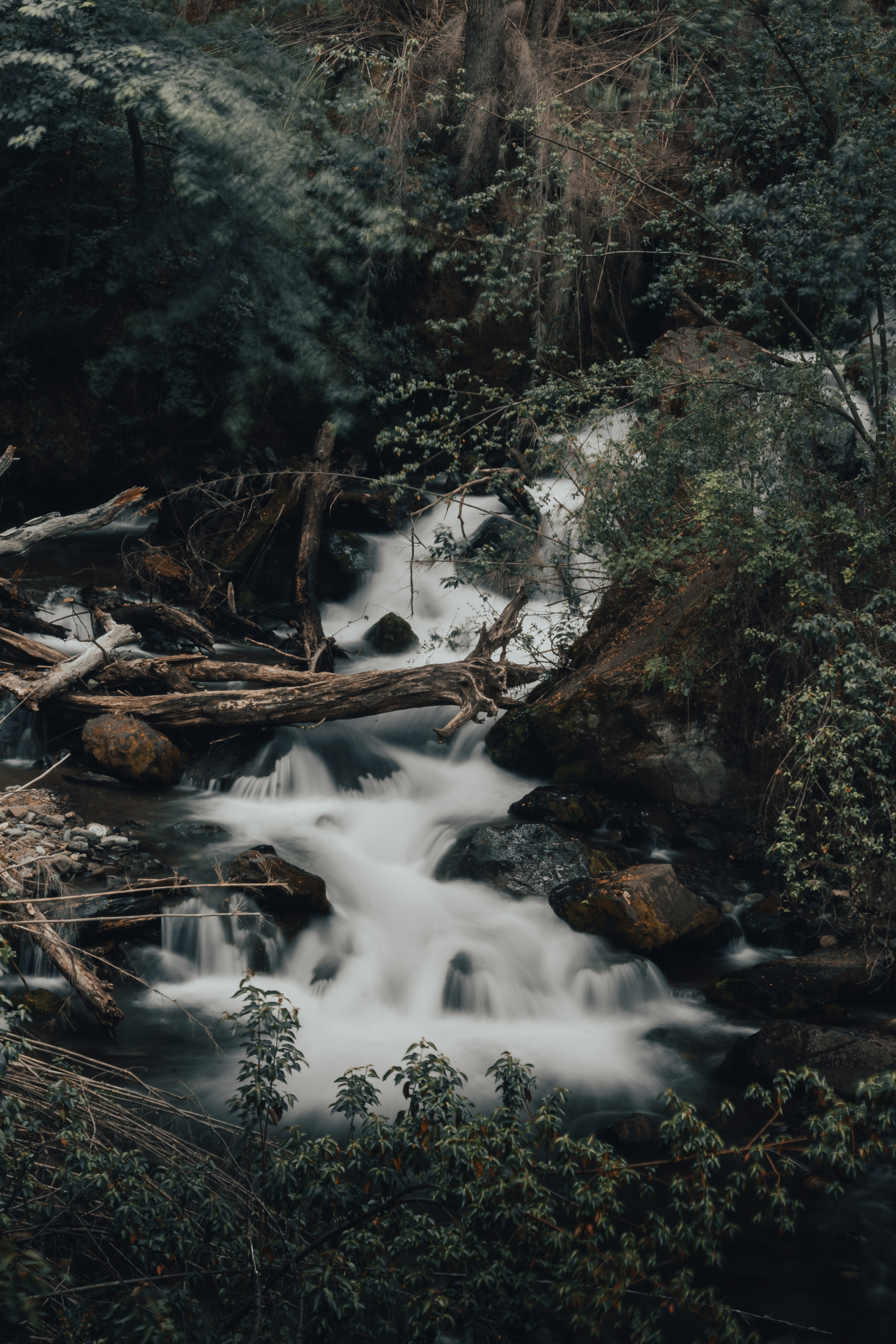 144257 download wallpaper Nature, Rivers, Creek, Brook, Stones, Logs, Wildlife, Bush screensavers and pictures for free