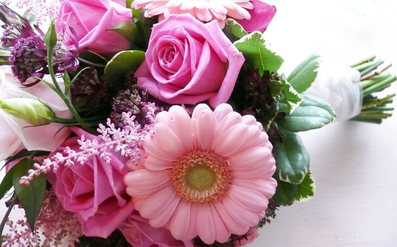 20278 télécharger le fond d'écran Bouquets, Plantes, Fleurs - économiseurs d'écran et images gratuitement