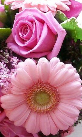 20278 скачать обои Растения, Цветы, Букеты - заставки и картинки бесплатно